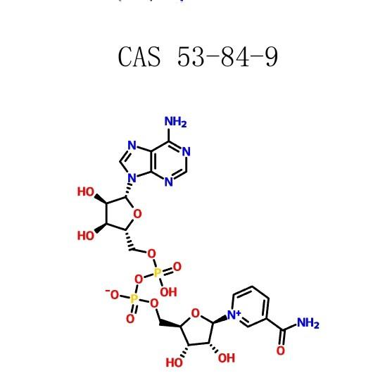 Nikotīnamīda adenīna dinukleotīds (53-84-9)