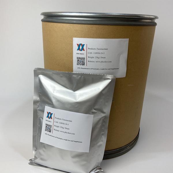 Fasoracetam 110958-19-5
