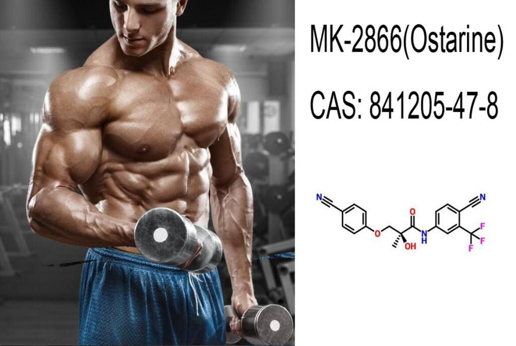Truth you should know before using MK-2866(Ostarine)