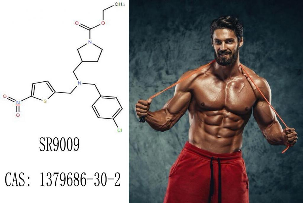 SARM Supplements in Top 10 SR9009 (1379686-30-2)