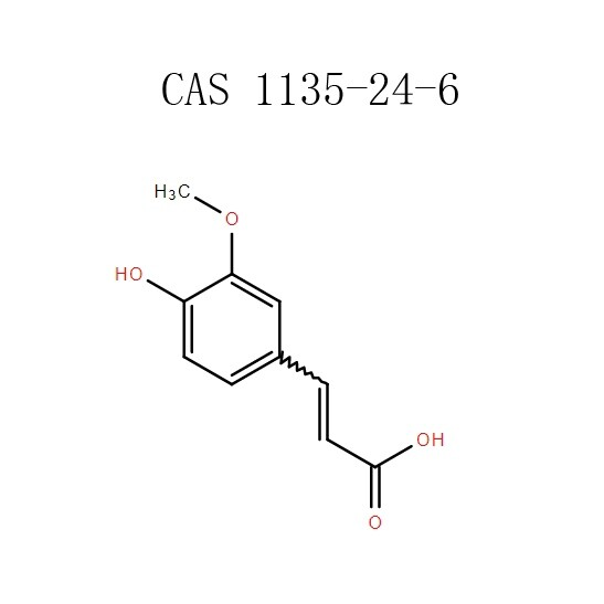 אבקת חומצה Ferulic (1135-24-6) יצרנים - Phcoker Chemical