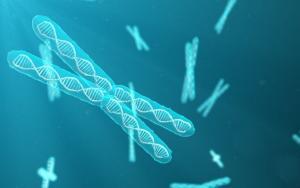 prednosti pirolokinolinovog kinona