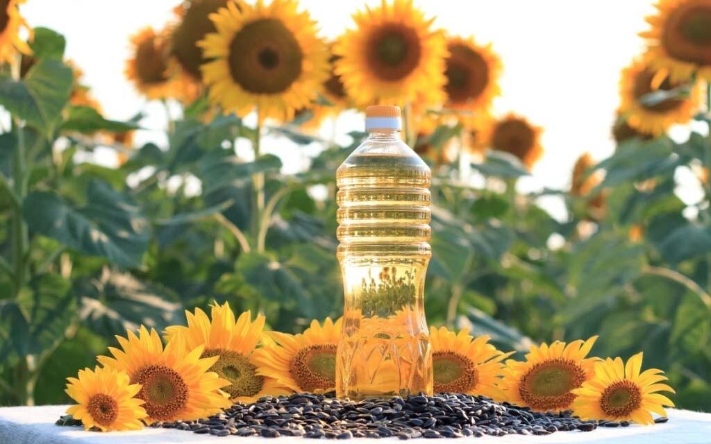sunflower oil-banner